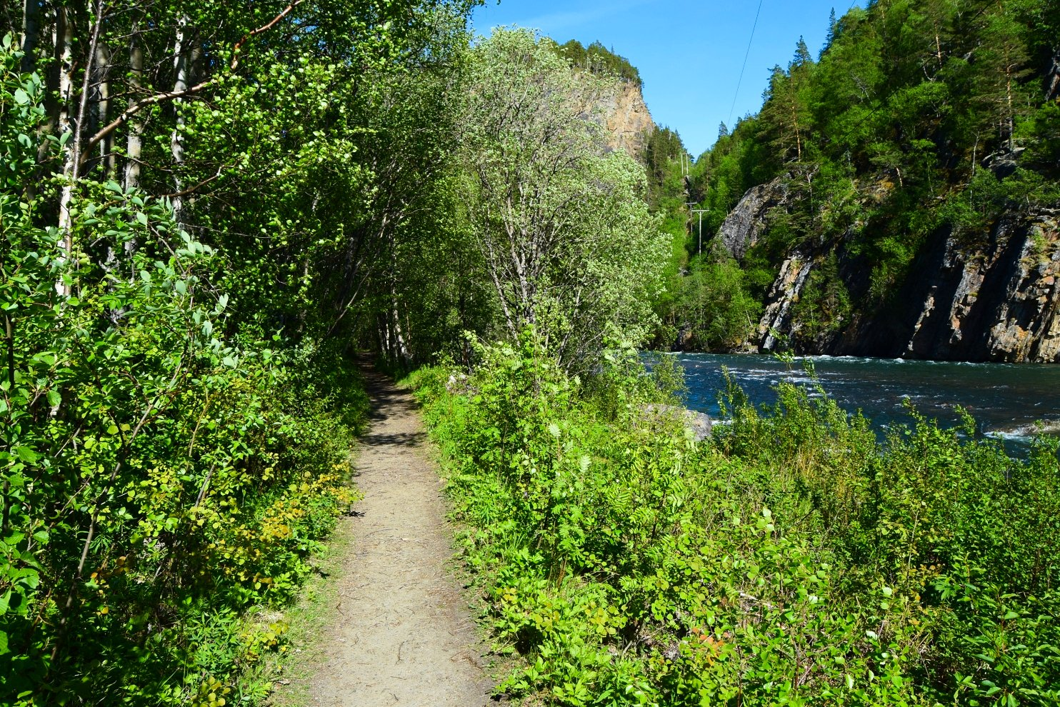 Hiking trail along Junkerdal River