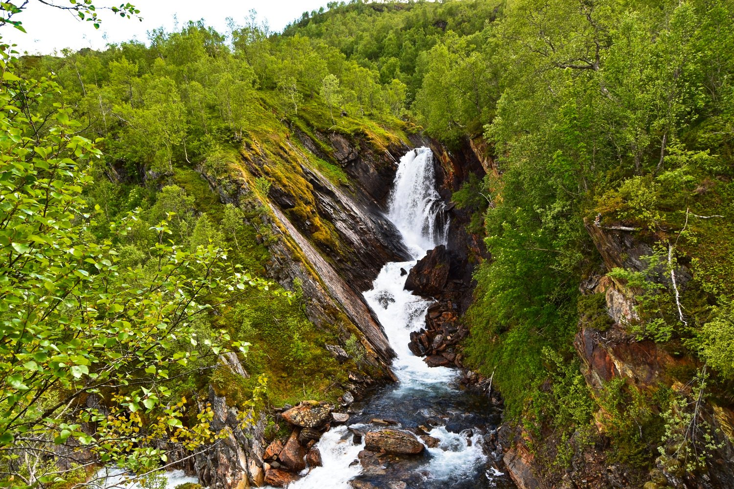 Waterfall in the forest of Valnesfjord